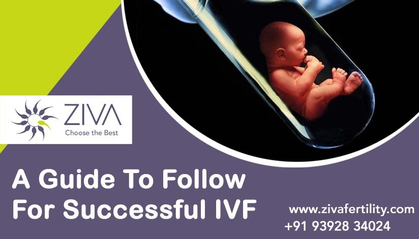 A Guide To Follow For Successful IVF
