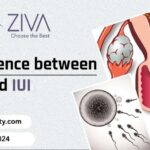 Difference Between IVF And IUI