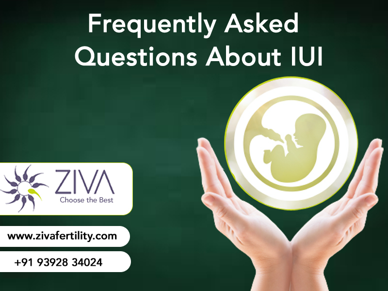 Frequently Asked Questions About IUI